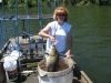 bowfishing-desoto-bend-2010-001