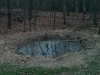 food plot waterhole